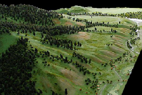 modelli plastici ambientali e territoriali